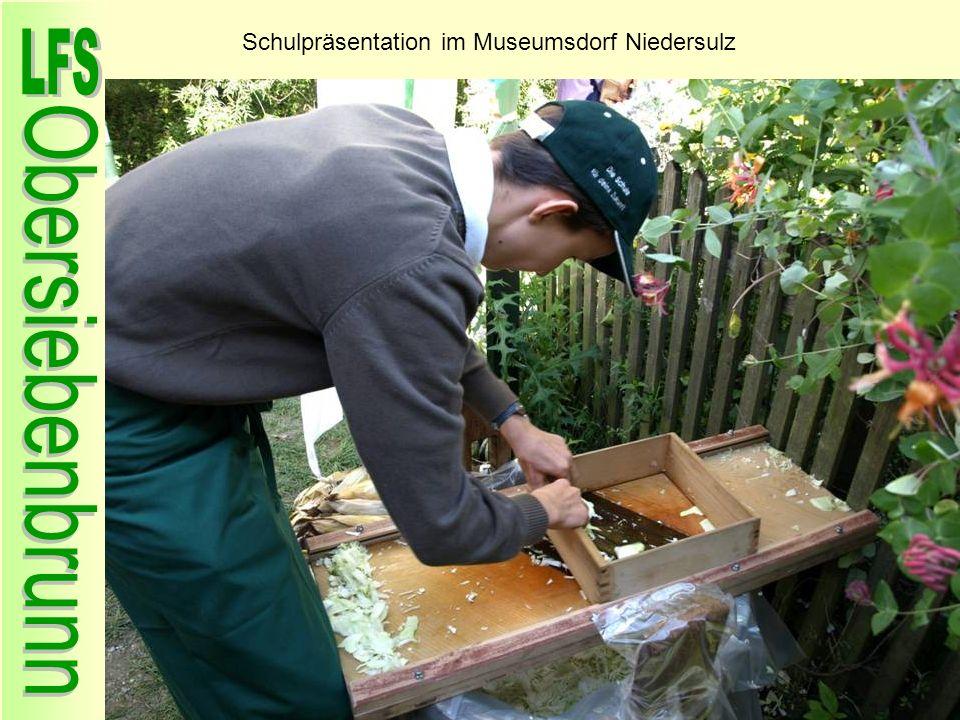 Schulpräsentation im Museumsdorf Niedersulz