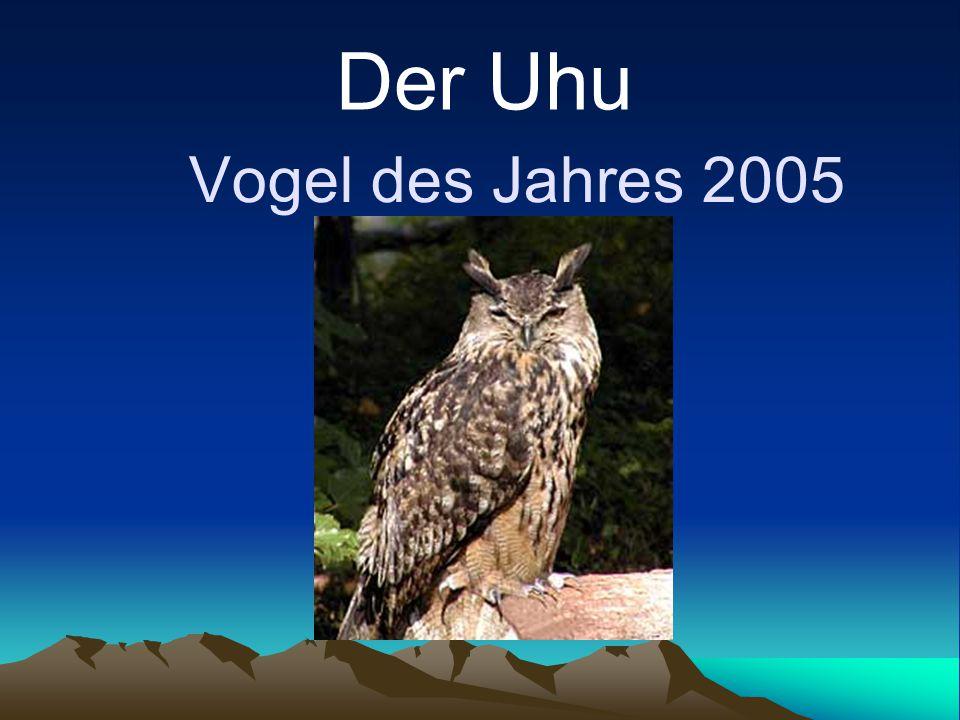 Vogel des Jahres 2005 Der Uhu