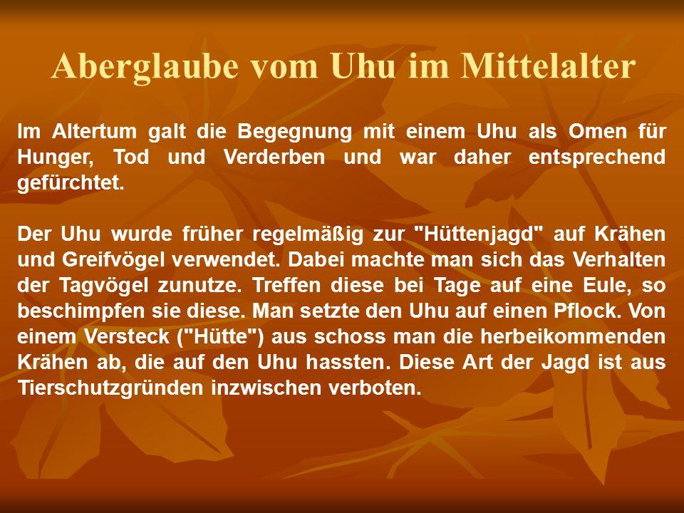 Aberglaube vom Uhu im Mittelalter Im Altertum galt die Begegnung mit einem Uhu als Omen für Hunger, Tod und Verderben und war daher entsprechend gefürchtet.