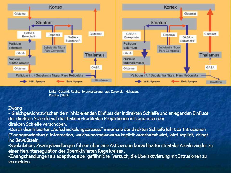 Zwang: - Gleichgewicht zwischen dem inhibierenden Einfluss der indirekten Schleife und erregenden Einfluss der direkten Schleife auf die thalamo-korti