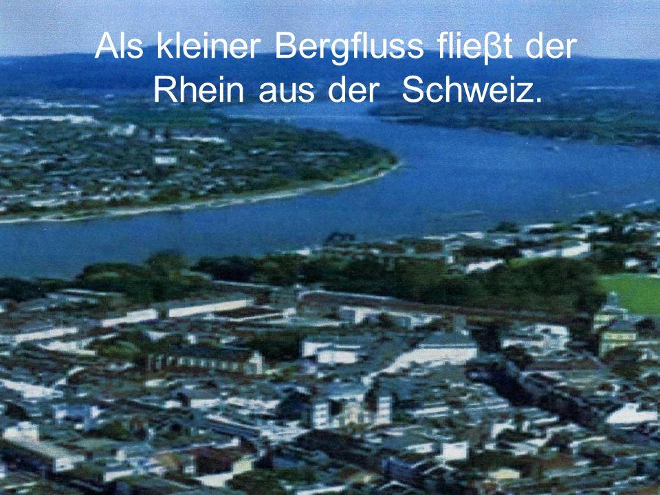 Als kleiner Bergfluss flieβt der Rhein aus der Schweiz.