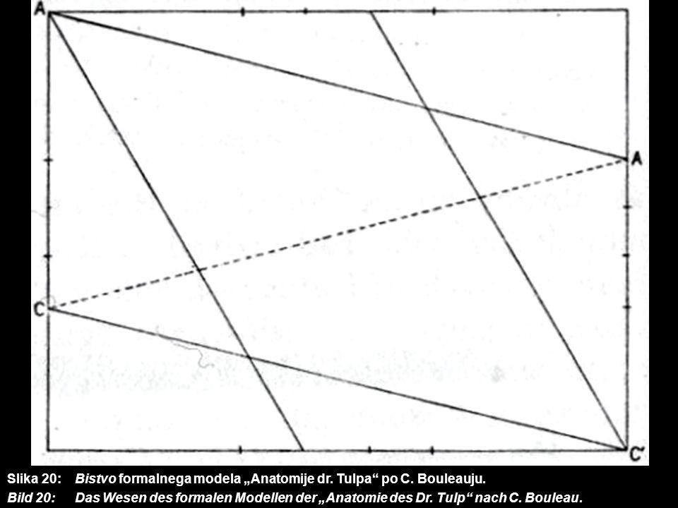 Slika 20: Bistvo formalnega modela Anatomije dr. Tulpa po C. Bouleauju. Bild 20: Das Wesen des formalen Modellen der Anatomie des Dr. Tulp nach C. Bou