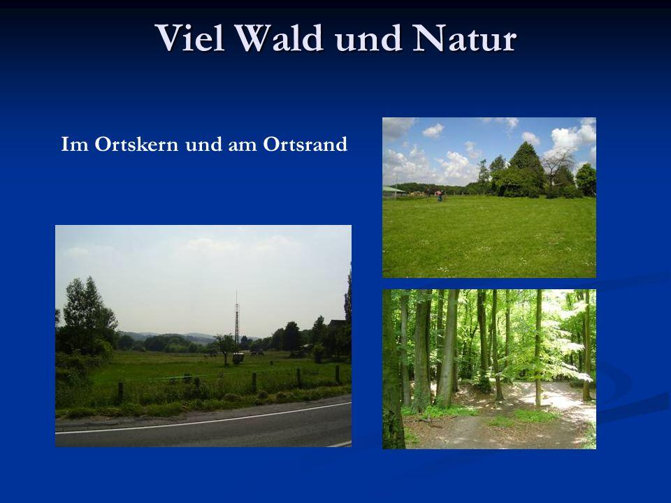 Viel Wald und Natur Im Ortskern und am Ortsrand