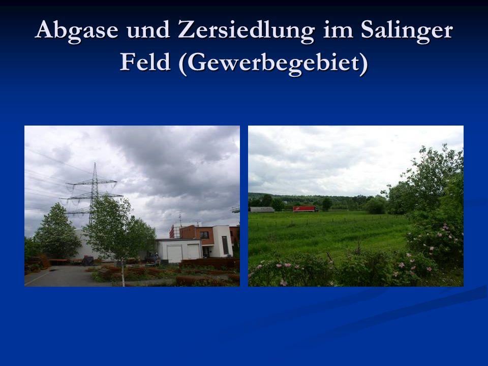 Vereinzelt: Soziale Problembereiche Beispielsweise: Kerschensteiner Straße