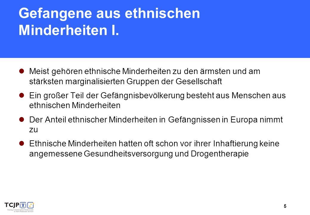 6 Gefangene aus ethnischen Minderheiten II.