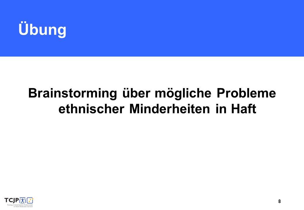 8 Übung Brainstorming über mögliche Probleme ethnischer Minderheiten in Haft