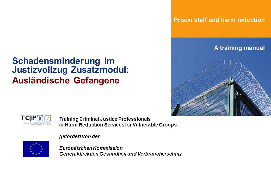 Schadensminderung im Justizvollzug Zusatzmodul: Ausländische Gefangene Training Criminal Justice Professionals in Harm Reduction Services for Vulnerab