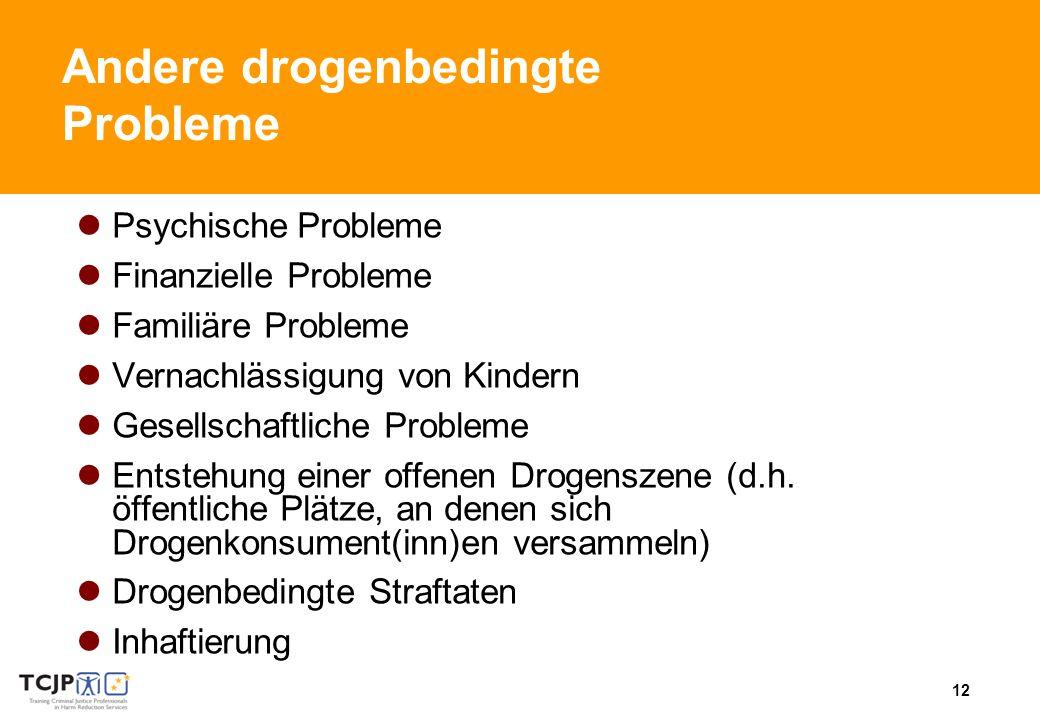 12 Andere drogenbedingte Probleme Psychische Probleme Finanzielle Probleme Familiäre Probleme Vernachlässigung von Kindern Gesellschaftliche Probleme Entstehung einer offenen Drogenszene (d.h.