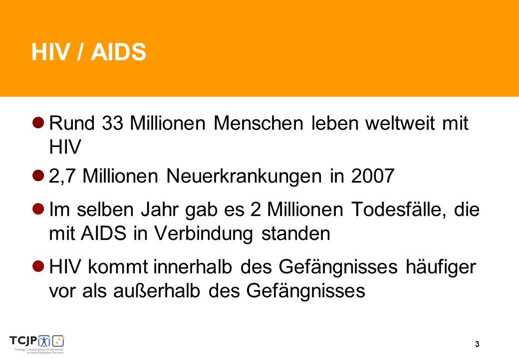 3 HIV / AIDS Rund 33 Millionen Menschen leben weltweit mit HIV 2,7 Millionen Neuerkrankungen in 2007 Im selben Jahr gab es 2 Millionen Todesfälle, die mit AIDS in Verbindung standen HIV kommt innerhalb des Gefängnisses häufiger vor als außerhalb des Gefängnisses