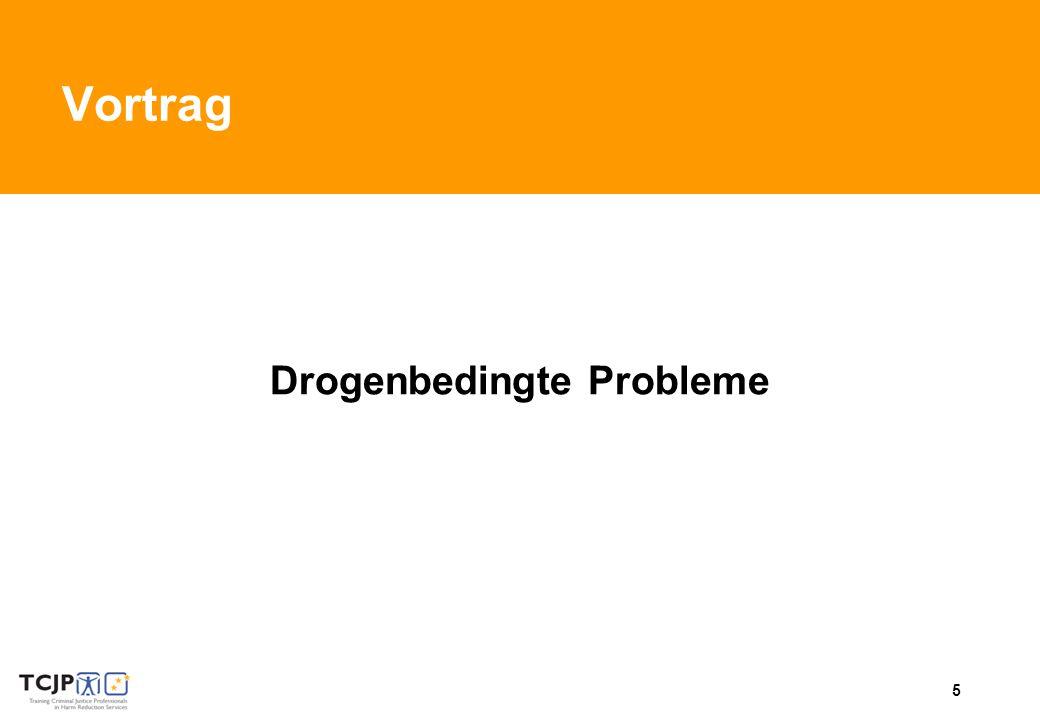 5 Vortrag Drogenbedingte Probleme