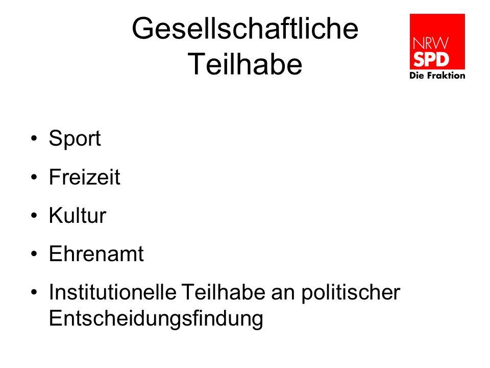 Gesellschaftliche Teilhabe Sport Freizeit Kultur Ehrenamt Institutionelle Teilhabe an politischer Entscheidungsfindung