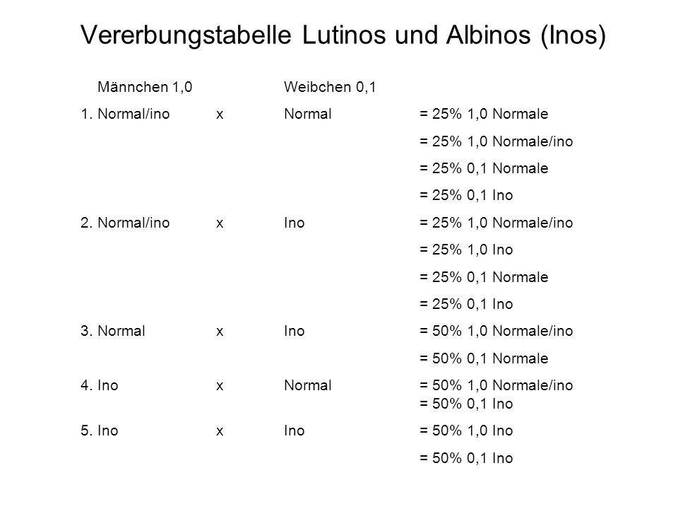 Vererbungstabelle Lutinos und Albinos (Inos) Männchen 1,0Weibchen 0,1 1. Normal/ino xNormal = 25% 1,0 Normale = 25% 1,0 Normale/ino = 25% 0,1 Normale