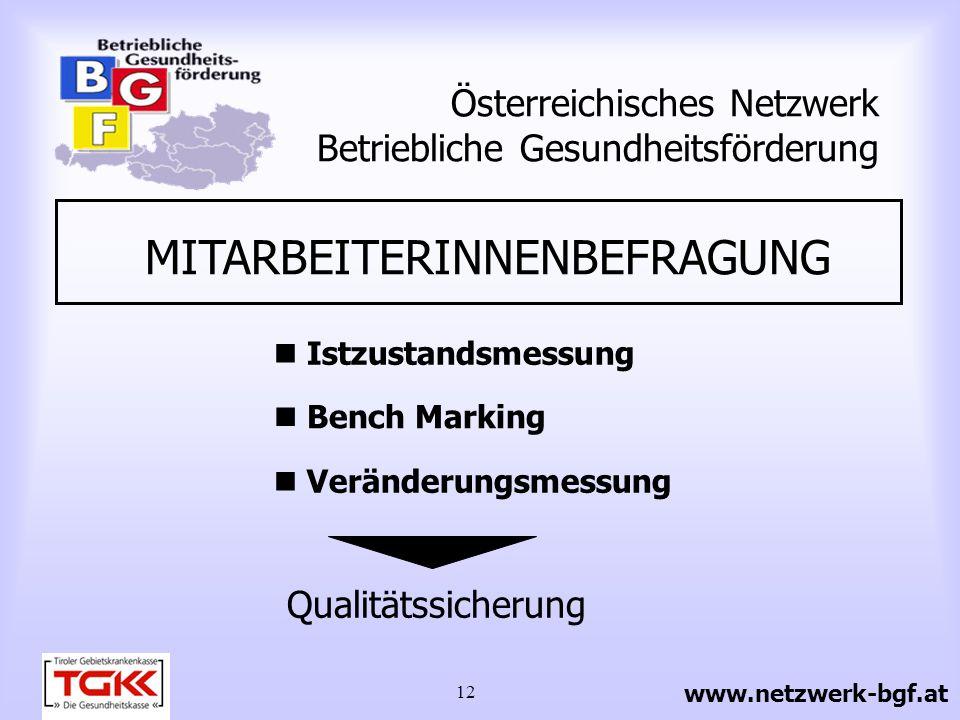 12 Österreichisches Netzwerk Betriebliche Gesundheitsförderung MITARBEITERINNENBEFRAGUNG Istzustandsmessung Bench Marking Veränderungsmessung Qualität