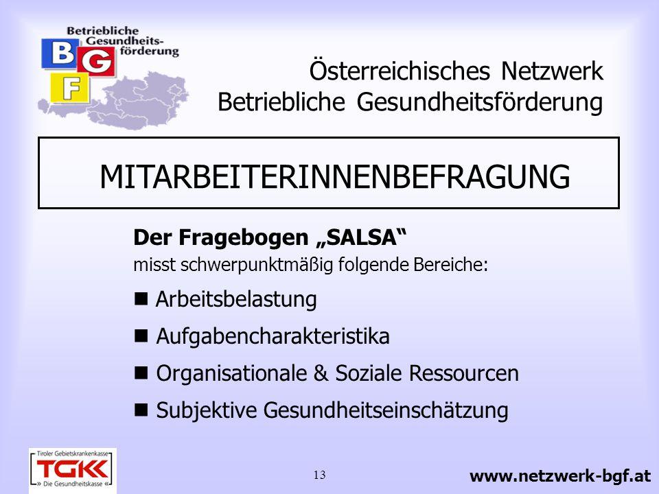 13 Österreichisches Netzwerk Betriebliche Gesundheitsförderung MITARBEITERINNENBEFRAGUNG Der Fragebogen SALSA misst schwerpunktmäßig folgende Bereiche