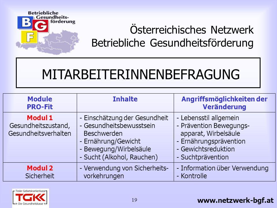 19 Österreichisches Netzwerk Betriebliche Gesundheitsförderung www.netzwerk-bgf.at Modul 1 Gesundheitszustand, Gesundheitsverhalten Modul 2 Sicherheit