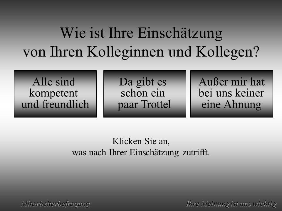 Animation by Helmut Rez 2001 * E-Mail: rez@psy.uni-muenchen.derez@psy.uni-muenchen.de Mitarbeiterbefragung Ihre Meinung ist uns wichtig Sehr schön.