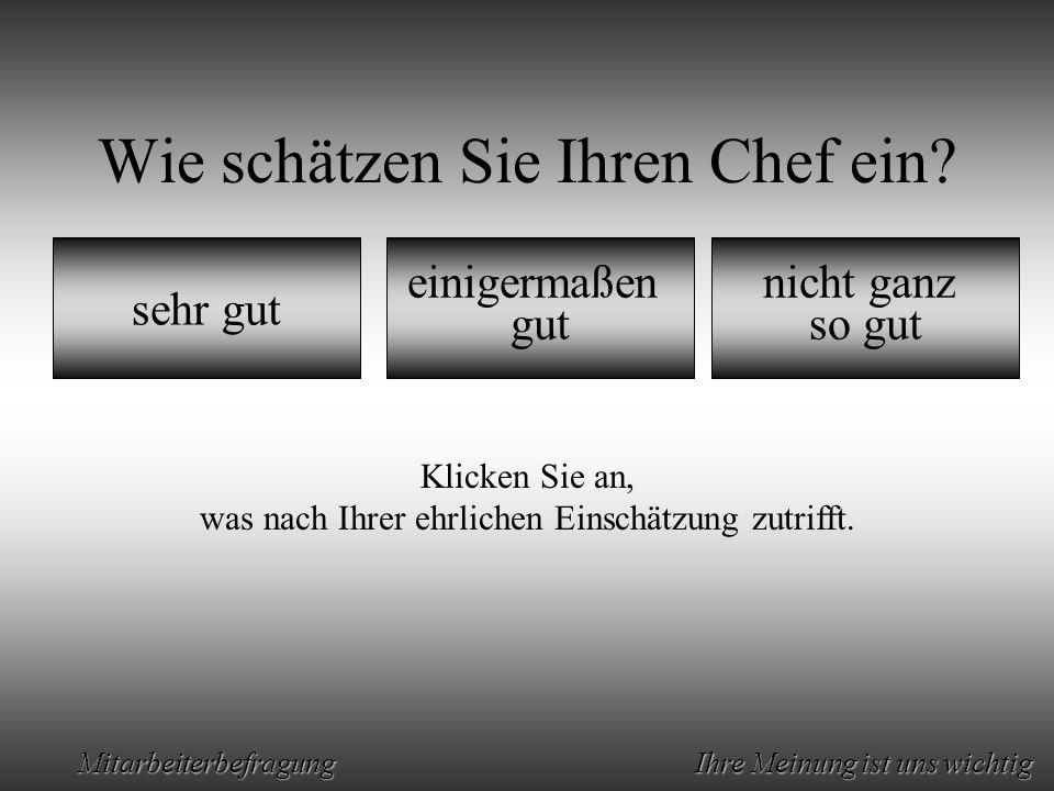 Animation by Helmut Rez 2001 * E-Mail: rez@psy.uni-muenchen.derez@psy.uni-muenchen.de Mitarbeiterbefragung Ihre Meinung ist uns wichtig Sie meinen also:Außer mir hat bei uns keiner eine Ahnung.