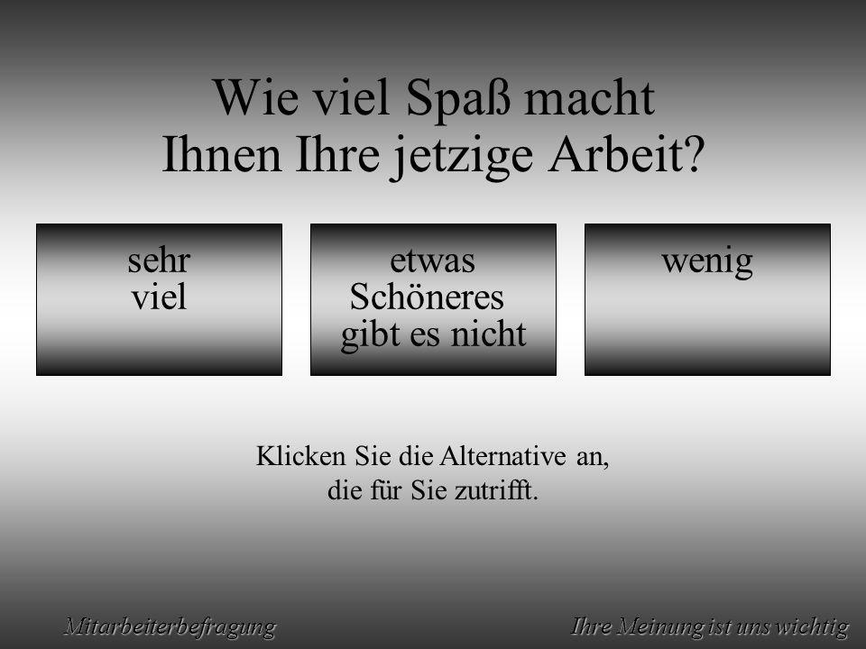 Animation by Helmut Rez 2001 * E-Mail: rez@psy.uni-muenchen.derez@psy.uni-muenchen.de Mitarbeiterbefragung Ihre Meinung ist uns wichtig Wie viel Spaß macht Ihnen Ihre jetzige Arbeit.