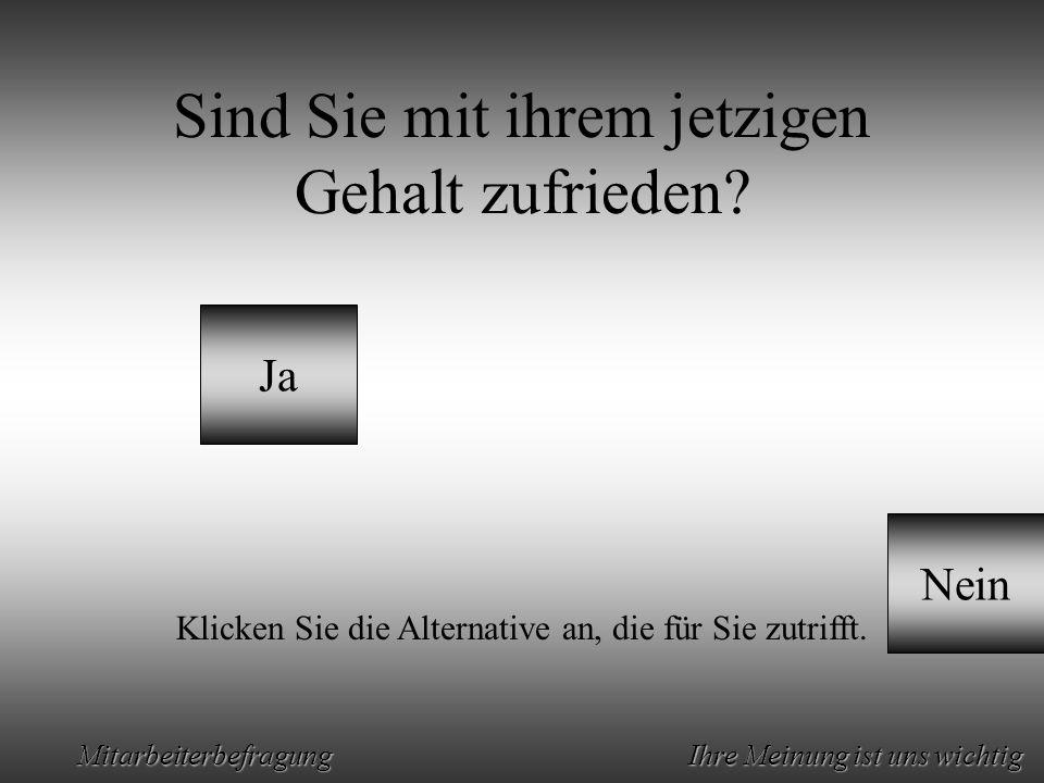 Animation by Helmut Rez 2001 * E-Mail: rez@psy.uni-muenchen.derez@psy.uni-muenchen.de Mitarbeiterbefragung Ihre Meinung ist uns wichtig Sind Sie mit ihrem jetzigen Gehalt zufrieden.