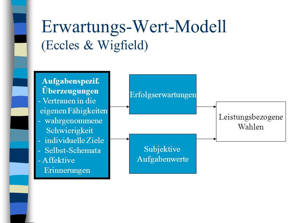 Erwartungs-Wert-Modell (Eccles & Wigfield) Erfolgserwartungen Subjektive Aufgabenwerte Leistungsbezogene Wahlen Aufgabenspezif. Überzeugungen - Vertra