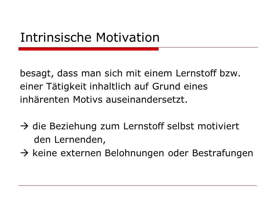Intrinsische Motivation besagt, dass man sich mit einem Lernstoff bzw.