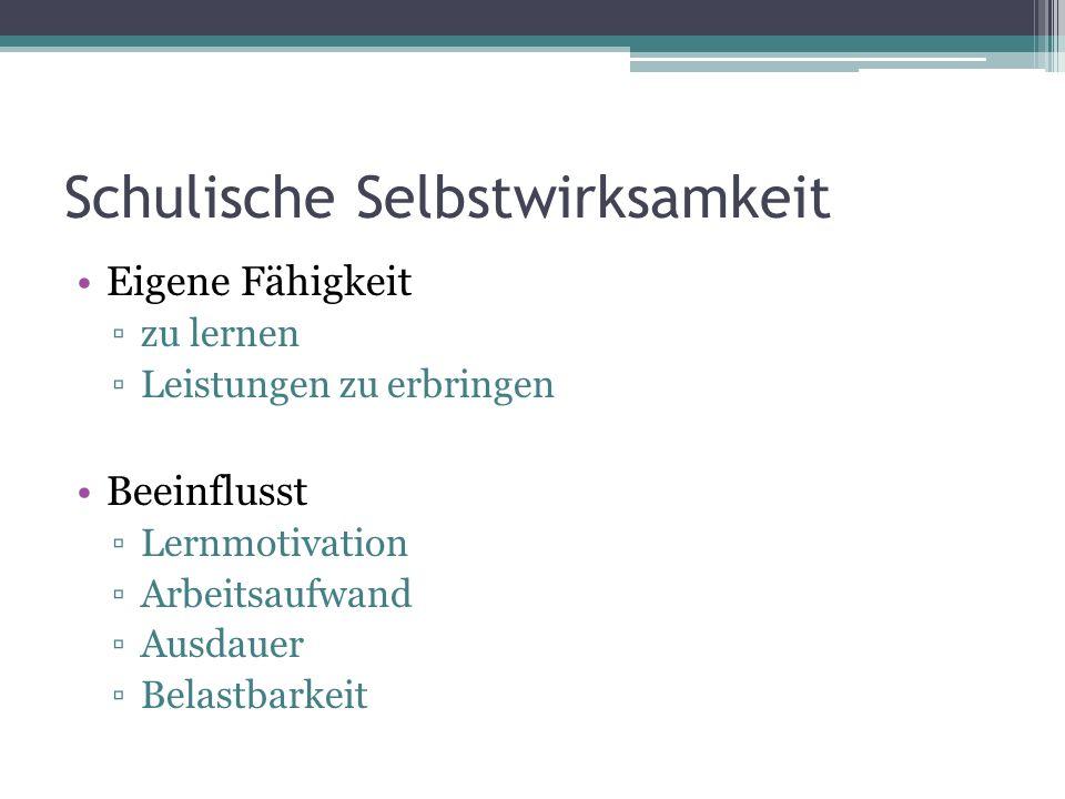Literatur Basisliteratur: Puca, R.M., & Langens, T.A.