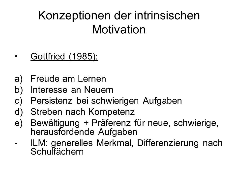Konzeptionen der intrinsischen Motivation Gottfried (1985): a)Freude am Lernen b)Interesse an Neuem c)Persistenz bei schwierigen Aufgaben d)Streben na