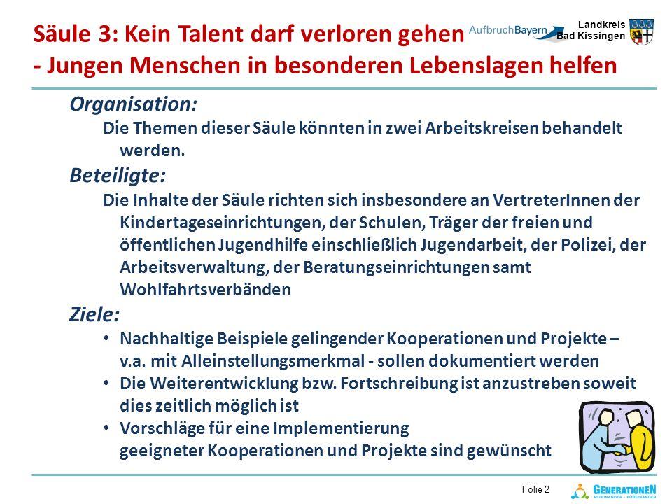 Landkreis Bad Kissingen Folie 2 Organisation: Die Themen dieser Säule könnten in zwei Arbeitskreisen behandelt werden.
