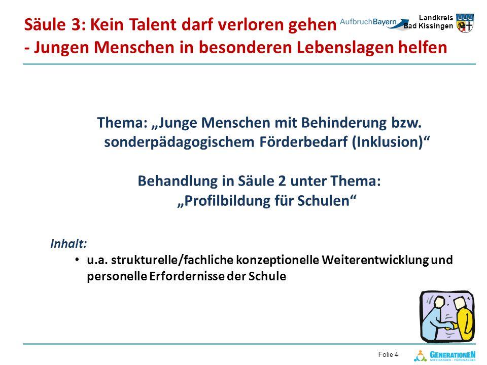 Landkreis Bad Kissingen Folie 4 Thema: Junge Menschen mit Behinderung bzw.