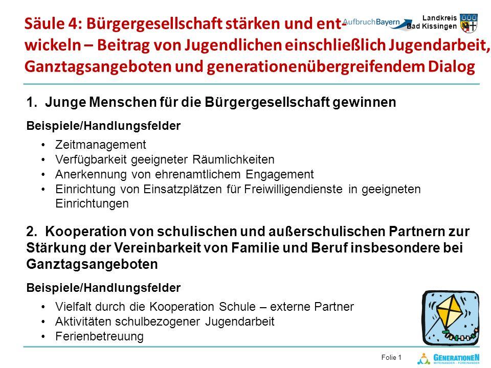 Landkreis Bad Kissingen Folie 1 1. Junge Menschen für die Bürgergesellschaft gewinnen Beispiele/Handlungsfelder Zeitmanagement Verfügbarkeit geeignete
