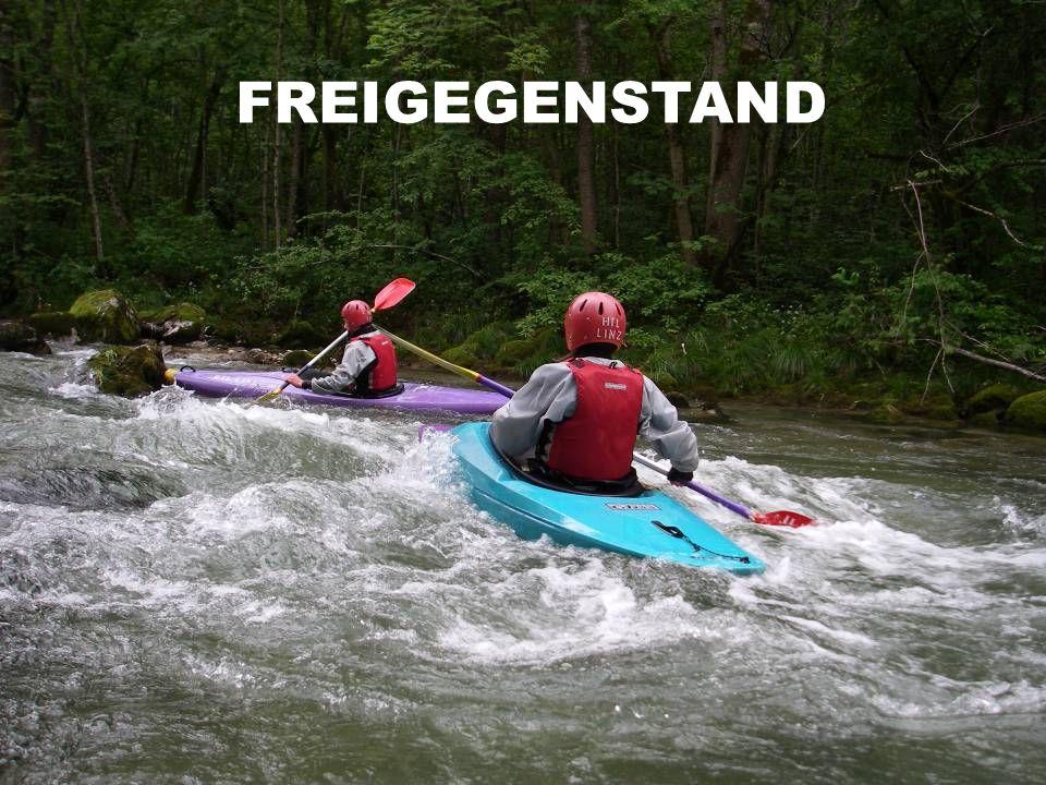 FREIGEGENSTAND