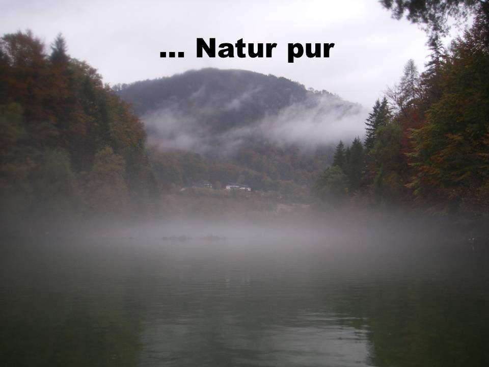 … Natur pur