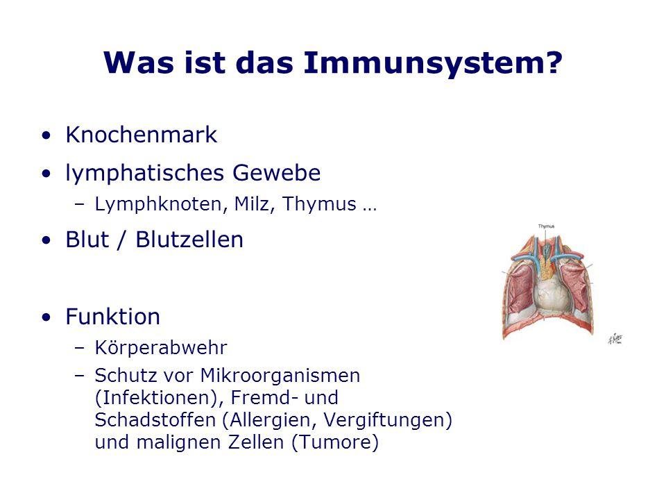 Was ist das Immunsystem? Knochenmark lymphatisches Gewebe –Lymphknoten, Milz, Thymus … Blut / Blutzellen Funktion –Körperabwehr –Schutz vor Mikroorgan
