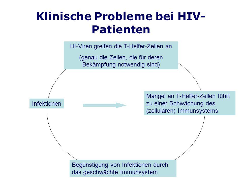 Klinische Probleme bei HIV- Patienten HI-Viren greifen die T-Helfer-Zellen an (genau die Zellen, die für deren Bekämpfung notwendig sind) Mangel an T-Helfer-Zellen führt zu einer Schwächung des (zellulären) Immunsystems Begünstigung von Infektionen durch das geschwächte Immunsystem Infektionen