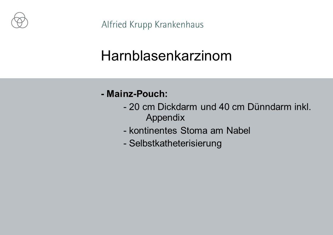 - Mainz-Pouch: - 20 cm Dickdarm und 40 cm Dünndarm inkl.