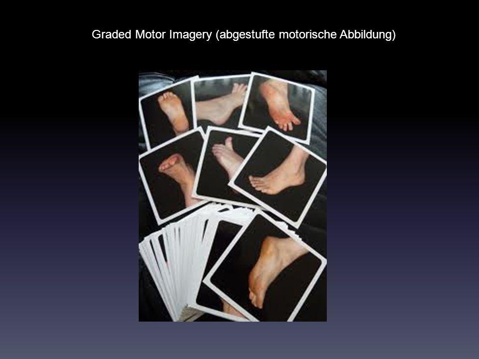 Graded Motor Imagery (abgestufte motorische Abbildung)