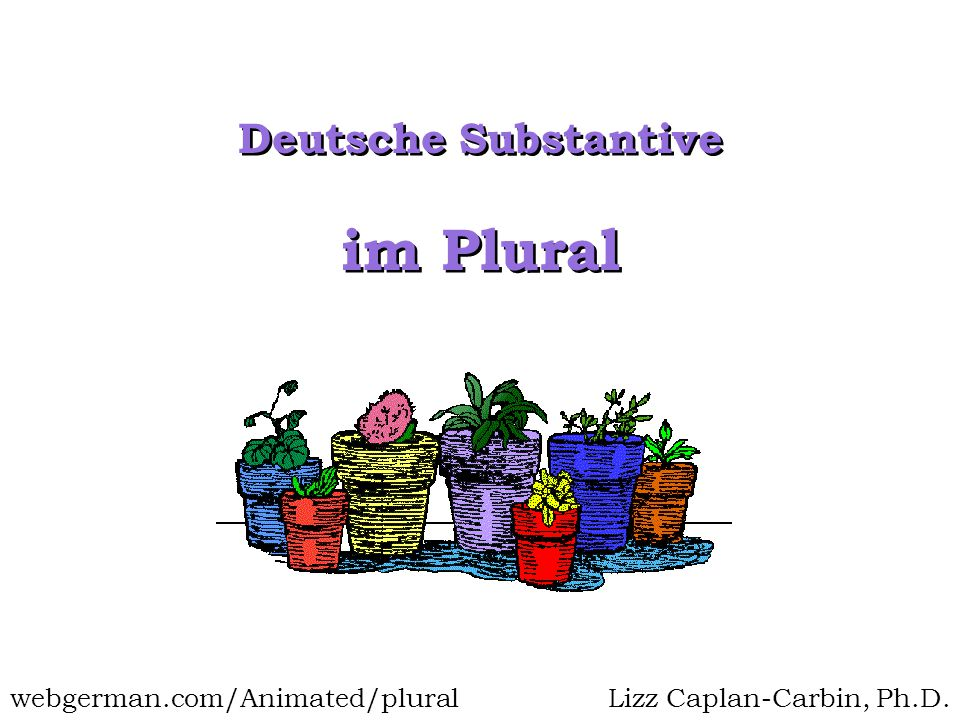 im Plural Deutsche Substantive Lizz Caplan-Carbin, Ph.D.webgerman.com/Animated/plural