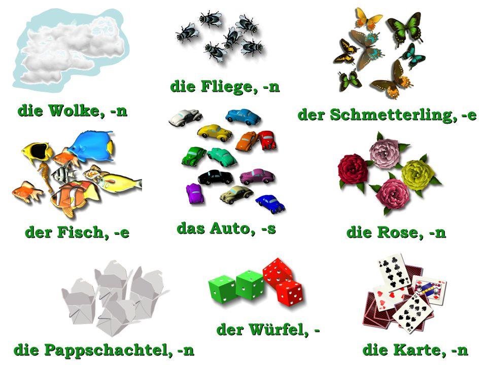 der Fisch, -e die Wolke, -n die Karte, -n die Pappschachtel, -n die Fliege, -n der Schmetterling, -e das Auto, -s die Rose, -n der Würfel, - die Wolke