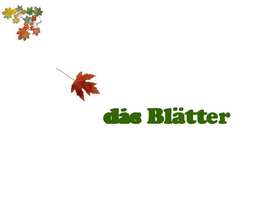 die Blätterdas Blatt
