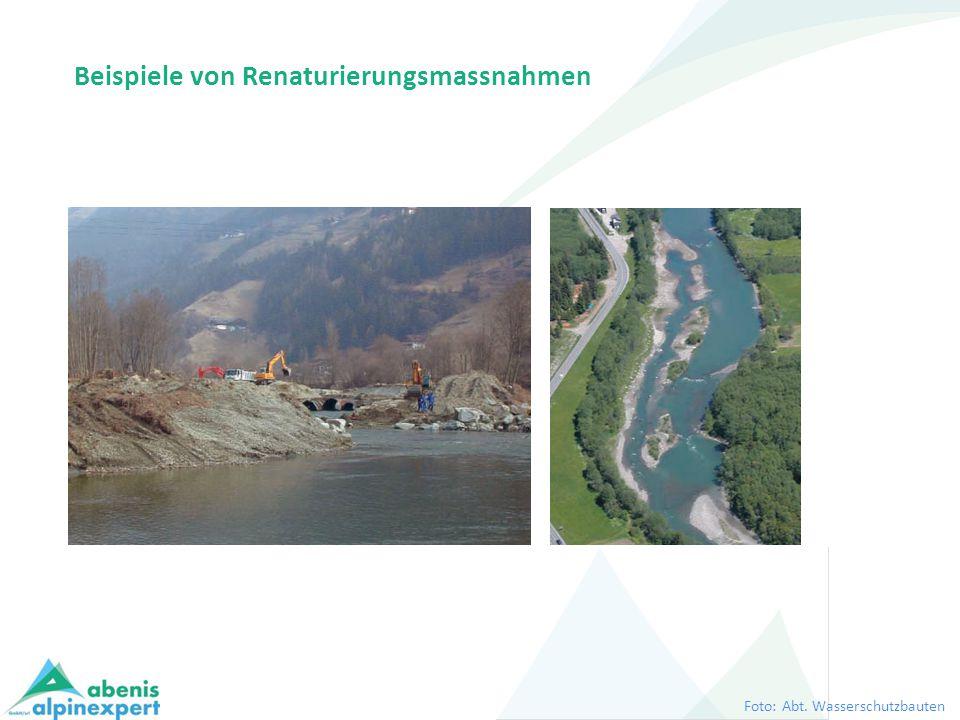 Beispiele von Renaturierungsmassnahmen Foto: Abt. Wasserschutzbauten