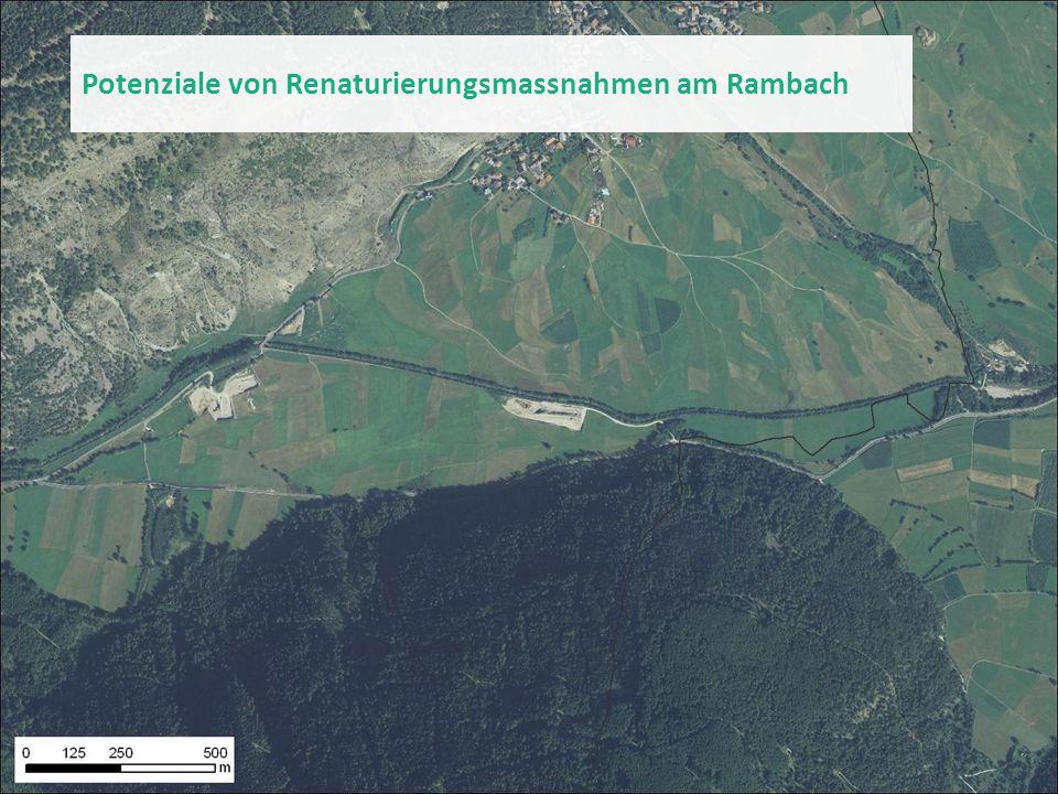 Potenziale von Renaturierungsmassnahmen am Rambach