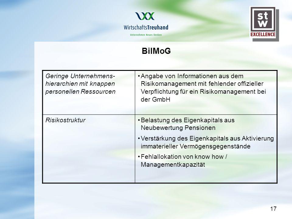 17 BilMoG Geringe Unternehmens- hierarchien mit knappen personellen Ressourcen Angabe von Informationen aus dem Risikomanagement mit fehlender offizie