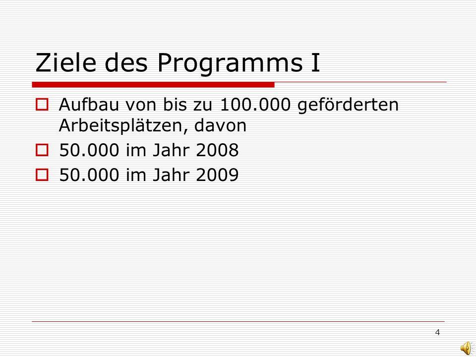 4 Ziele des Programms I Aufbau von bis zu 100.000 geförderten Arbeitsplätzen, davon 50.000 im Jahr 2008 50.000 im Jahr 2009