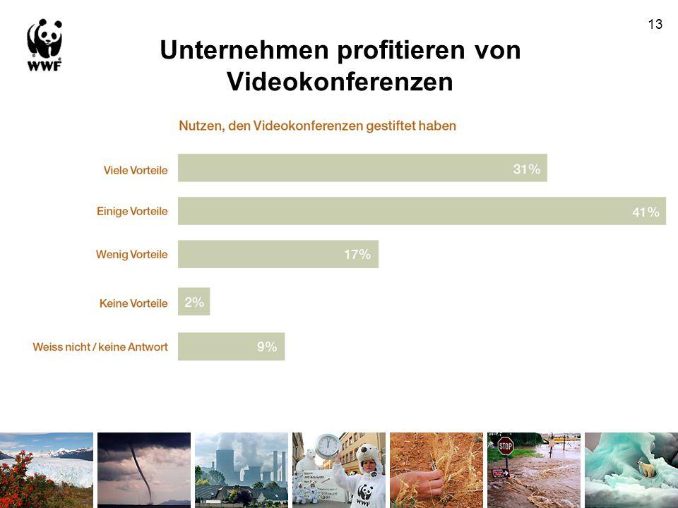 Unternehmen profitieren von Videokonferenzen 13