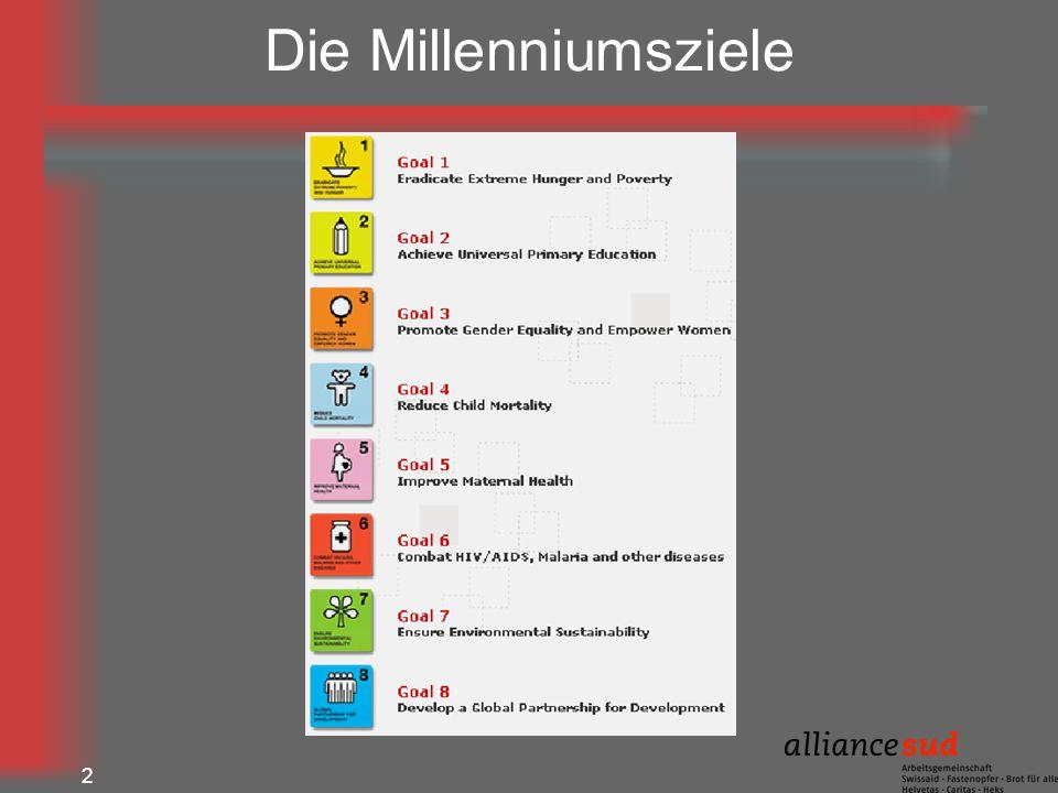 2 Die Millenniumsziele