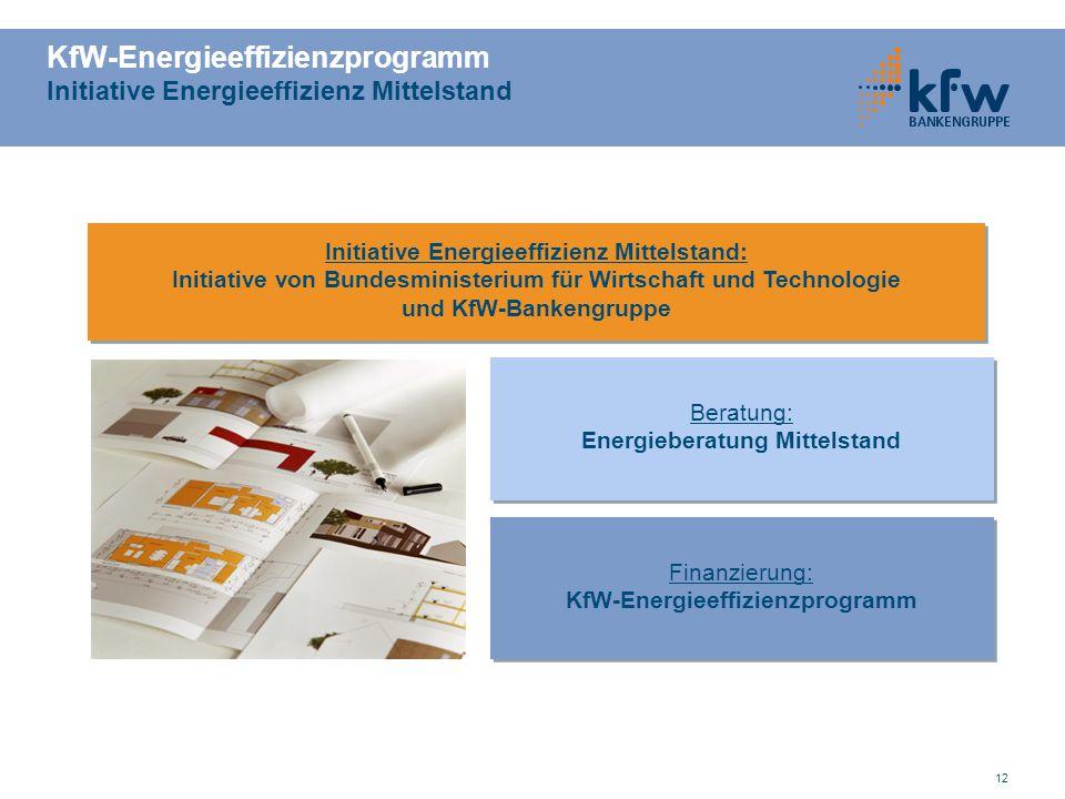 12 KfW-Energieeffizienzprogramm Initiative Energieeffizienz Mittelstand Initiative Energieeffizienz Mittelstand: Initiative von Bundesministerium für