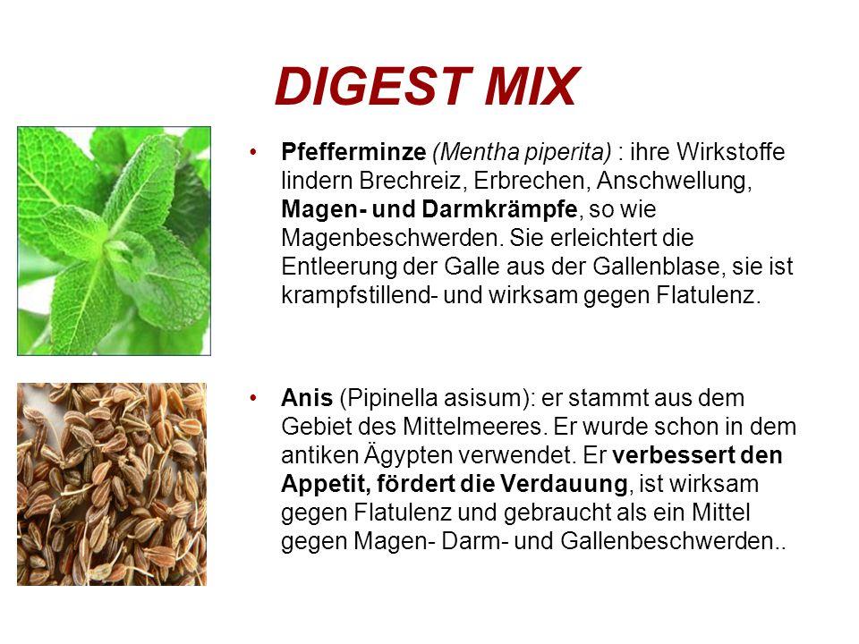 Pfefferminze (Mentha piperita) : ihre Wirkstoffe lindern Brechreiz, Erbrechen, Anschwellung, Magen- und Darmkrämpfe, so wie Magenbeschwerden.
