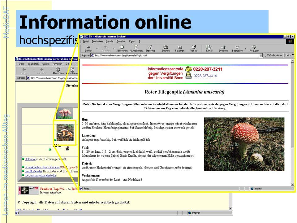 Lernen im medizinischen Alltag MedicDAT Information online hochspezifische Information