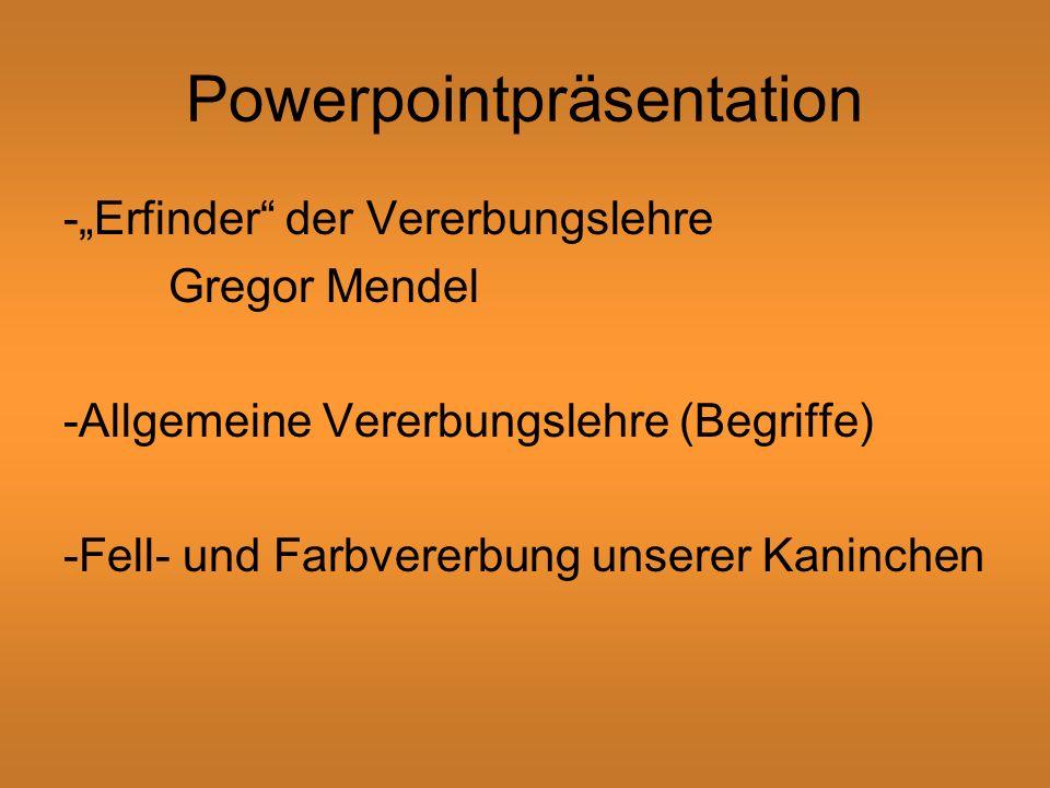 Powerpointpräsentation -Erfinder der Vererbungslehre Gregor Mendel -Allgemeine Vererbungslehre (Begriffe) -Fell- und Farbvererbung unserer Kaninchen