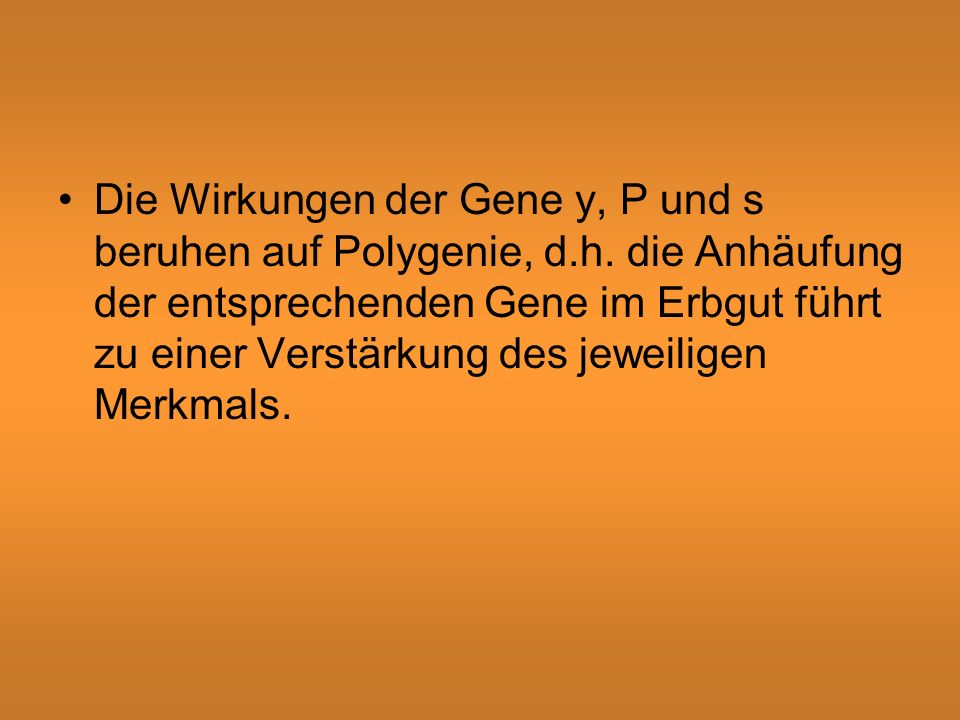 Die Wirkungen der Gene y, P und s beruhen auf Polygenie, d.h.